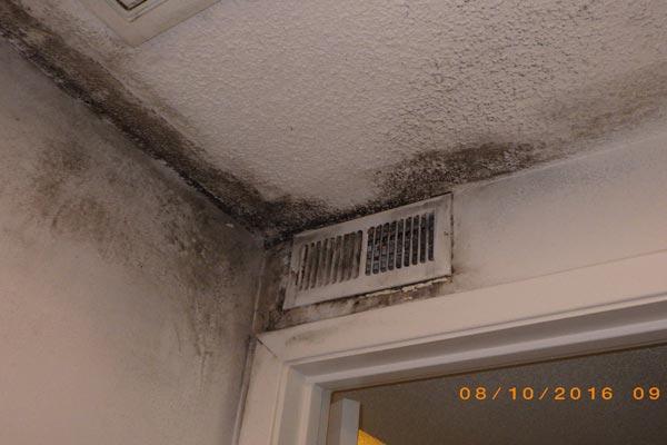 hvac mold damage first restoration services