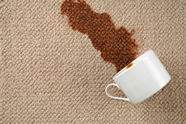 carpet-coffee-stain cleanup lynchburg va