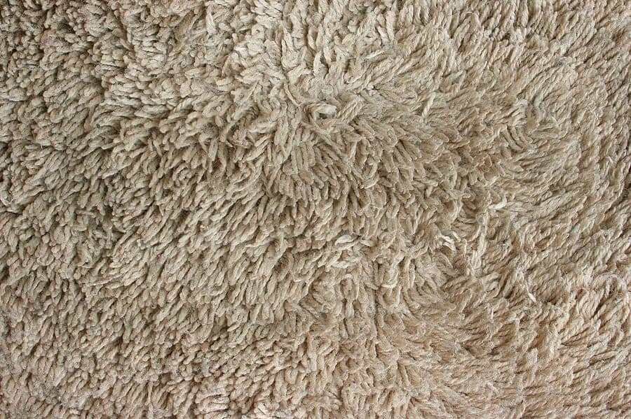 Carpet Cleaning Services L Natural Green Cleaning Process
